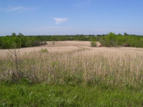 landscape-view_3