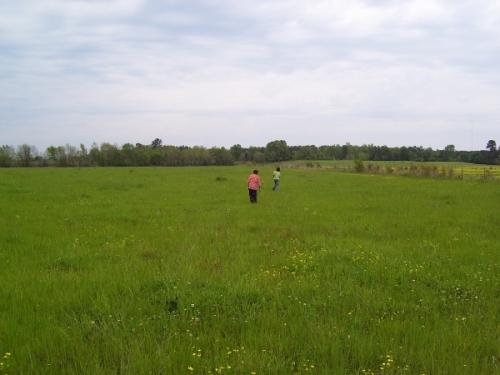 running-through-the-field_resized